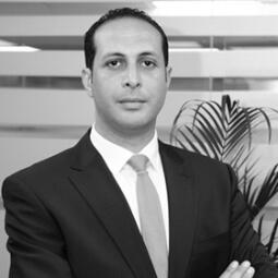 Mohamed Ali Abdelhak